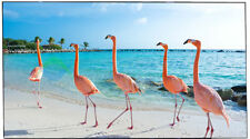 LG OLED65B8PUA 65 inch 2160p 4K HDR OLED Smart TV
