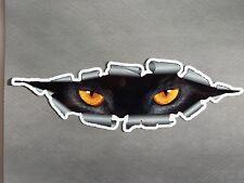 "9"" x 3"" Cat Eyes Vinyl Decal Sticker"