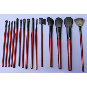 15 Piece Professional Brushes Set (Runnout Special)
