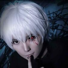Tokyo Ghoul Perücke wig Haare von Ken Kaneki Cosplay 30cm Anime Kurz Halloween