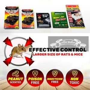 1 / 2 / 5 / 10  / 20pcs Rat Mice Mouse Sticky Rat Catcher Glue AU STOCK