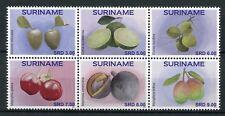 Suriname 2017 MNH Fruit Fruits 6v Block Berries Nature Stamps