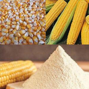 Natural Pure CORN FLOUR Premium Quality 100g-800g 100% Organic Sri Lanka.