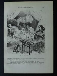 China CHINESE OPIUM SMOKERS Original Victorian Print by Figuier c1893