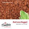 FloweRock 5LB Red Lava Rock - Nugget