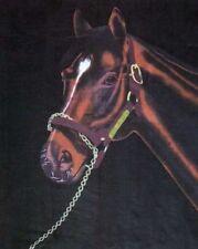 Horse Portrait Mustang 50x60 Polar Fleece Throw Blanket