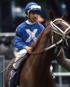1986 Jockey LAFFIT PINCAY JR Glossy 8x10 Photo Print Horse Racing Poster HOF 78