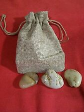 "NEW -  Rocks-In-A-Pouch - ""Not Your Father's Pet Rock"""