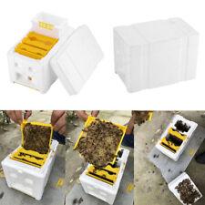 Auto Bee Honey Beehive Frames Beekeeping Kit Bee Hive King Box Pollination Box B