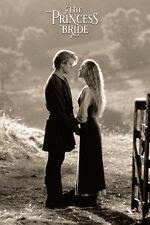 "The Princess bride movie poster 24x36""  Cary Elwes, Robin Wright, Mandy Patinkin"