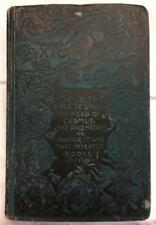1889 THE MYSTERIOUS ISLAND JULES VERNE FANTASY VICTORIAN ADVENTURE EXPLORATION