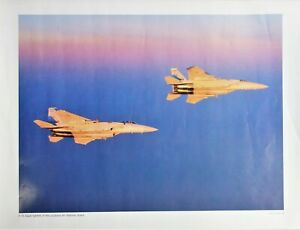 F-15 Eagle Fighters of Louisiana Air Nat'l Guard Military Poster Photo George H