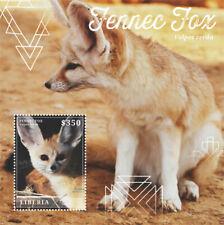 Liberia - 2015 - FENNEC FOX - Souvenir Sheet - Stamp - MNH