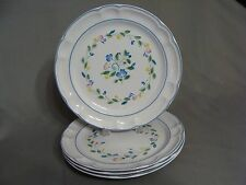 4 Stoneware Dinner Plates In The Floral Expressions Pattern