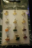 NIP New The Card Connection Charming Thoughts Autumn Fall Thanksgiving Charms