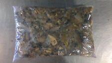 BULK PACK TRIPE 5 X 10LB (22KG) PURE & NATURAL RAW FROZEN DOG FOOD