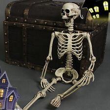 Realistic Skeleton Halloween Decor Scary Skull Man Bone Creepy Prop Decorations