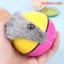 New listing Pet Dog Cat Toy Weasel Motorized Funny Rolling Ball Beaver Balls pet toys cZch2