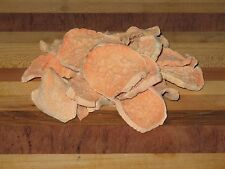Healthy Homemade Sweet Potato Chips Dog Treats (6 Ounces)
