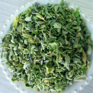 100g Fresh Organic Dried Catnip Nepeta Cataria Cat Mint Supplies Leaf Flower S