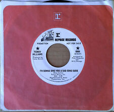 TERRY WILLIAMS - I'M GONNA SING YOU A SAD SONG SUSIE - WLP 45