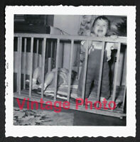 Two Kids in Baby Jail One Crying One Takes to the Bottle Vintage 1956 Snapshot
