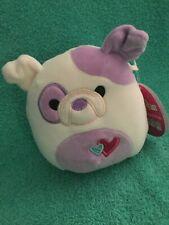 5� Valentine's Danielle the Bulldog Dog Hearts Squishmallow Plush Toy Soft Htf