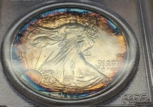 *BEST NATURALLY TONED SILVER EAGLE AVAILABLE* 1988 American Eagle $1   PCGS MS67