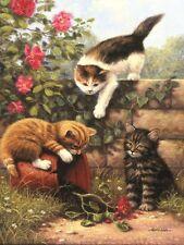 Malen nach Zahlen Katzen PJS52