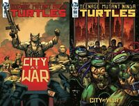 TEENAGE MUTANT NINJA TURTLES ONGOING #98 MAIN & VARIANT Lot IDW NM