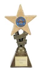 Worker of the Week School Glitter Star Sports Trophy Award ENGRAVED FREE