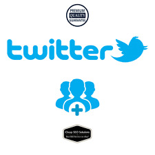 200+ Twitter-Followers | Fast, Safe & Ultra Quality | CheapSEOSolutions