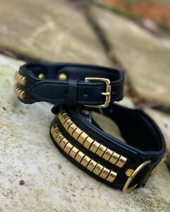 Staffy Leather Studded Dog Collar Gold Brass Studs Large Dogs