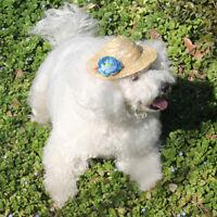 Haustier Hund Katze Party Kostüm Zubehör Stroh Sombrero Hut Schnalle