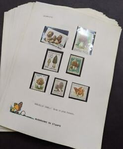 EDW1949SELL : WORLDWIDE TOPICAL Award winning collection of Mushrooms on pages