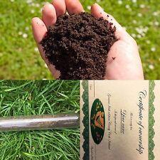 Genuine Irish Soil - Irish American Heritage