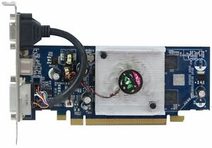 MANLI NVIDIA GEFORCE 8400GS 256MB 44938294