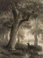 H. HEINLEIN (*1803), Bewaldete Flusslandschaft mit Hirsch, ca. 1850, Kohlezng.