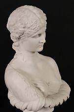 Marmo Busto di Clizia, classico SCULTURA. Ornamento, regalo, arte, marmo.