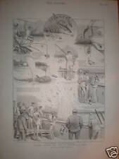 Hunting Panama Sharks from HMS Fantome 1893 print