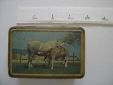 Rare ancienne boite en tôle lithographiée CHEVAL CHEVAUX poulain tete jument pre
