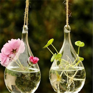 Glass Hanging Vase Flower Planter Container Pot Wedding Decor Tea Light HoldH Np