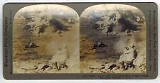 Keystone Stereoview Card Stereoscopic 12277 Elk Hunting Montana 1903
