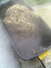 Brand new 'Mobile Hay Steamer' + FREE steam box! Easy way to steam hay!Dust Free