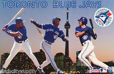 POSTER: MLB BASEBALL - 1995 TORONTO BLUE JAY'S  MONTAGE - FREE SHIPPING !  RW1 R