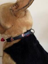 Black & Red Paw Stud Charm Detail Dog Collar 40cm Pet Animal Supplies Small