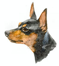 MINIATURE PINSCHER.     3 Blank Dog greeting cards by Christine Groves