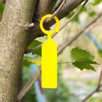 KE_ 10pcs Plastic Plant Hanging Tags Gardening Plant Flower Marker Label Graci