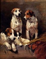 Dream-art Hand painted art Oil painting lovely dogs Three Hounds With A Terrier