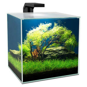 Ciano Cube Aquarium 15 with LED Light, Internal Filter, Lid 14.5L Fish Tank